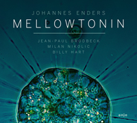 Mellowtonin Enders Cover